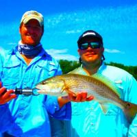 Beautiful top slop reds during a blue bird sky fishing day in Tampa Bay