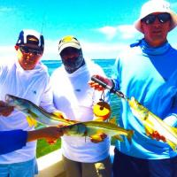 Triple hook up snook on this Tampa Fishing Charter