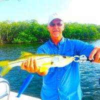 Healthy snook released by my client caught during a Tampa Fishing Charter