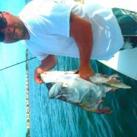 Client holding the head of what could of been a monster tarpon after a shark ate it in Boca Grande