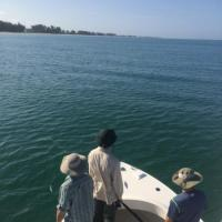 On the hunt for silver kings while tarpon fishing off the beaches of Anna Maria Island