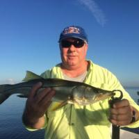 A good looking snook on a Tampa Bay fishing trip
