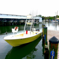 Tampa fishing charter boat used is a Marauder Marine Avenger 25 ft